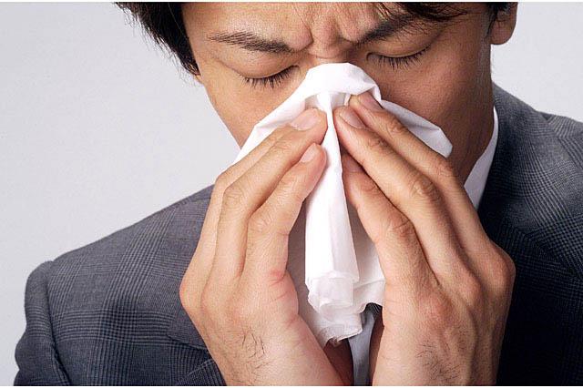 スギとヒノキの花粉症