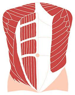 松阪こた堂接骨院|腰痛・交通事故治療|松阪市整骨院